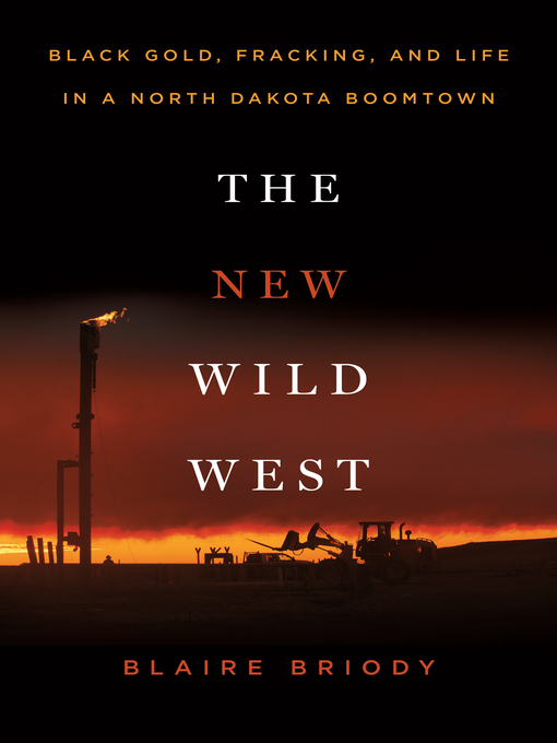 Title details for The New Wild West by Blaire Briody - Wait list