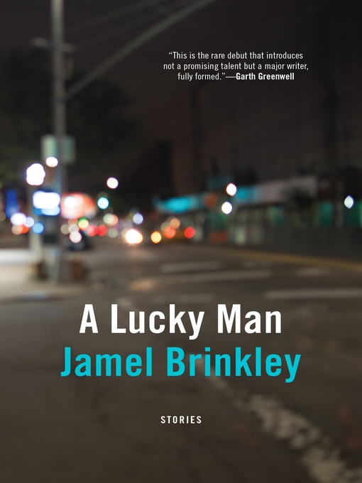 Title details for A Lucky Man by Jamel Brinkley - Wait list
