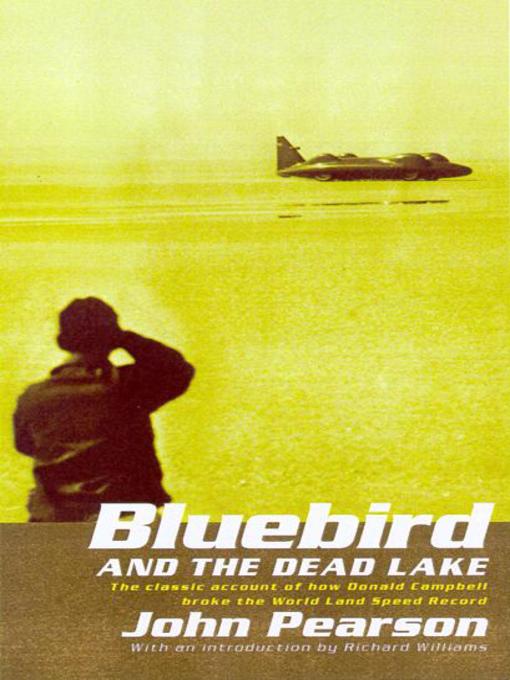 Bluebird & the Dead Lake