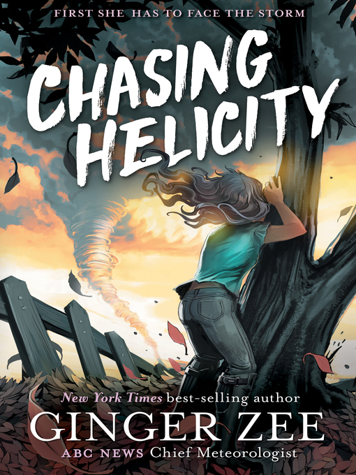 Cover of Chasing Helicity