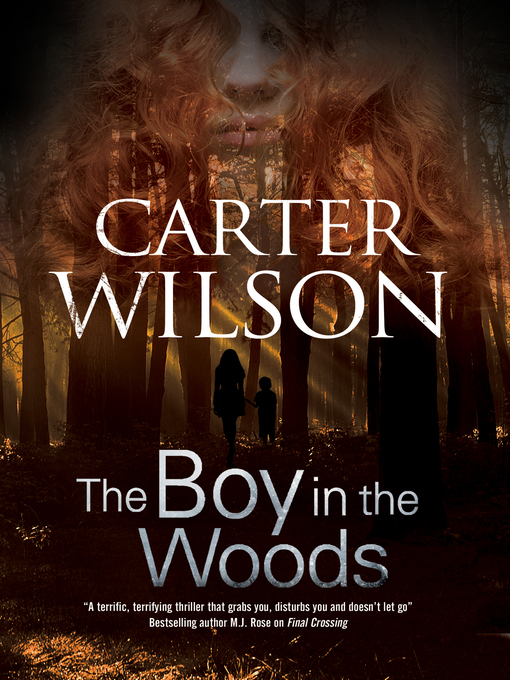 Title details for The Boy in the Woods by Carter Wilson - Wait list