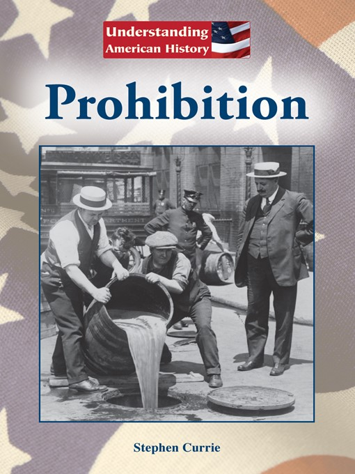 an understanding of the prohibition in the united states