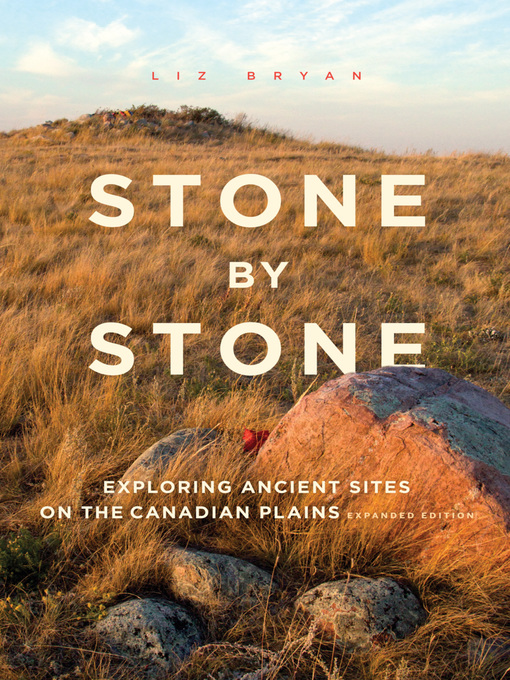 Title details for Stone by Stone by Liz Bryan - Available