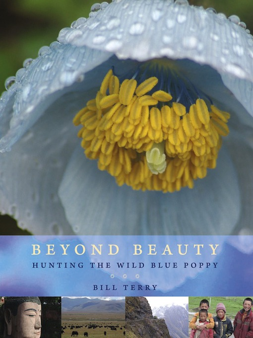 Title details for Beyond Beauty by Bill Terry - Available