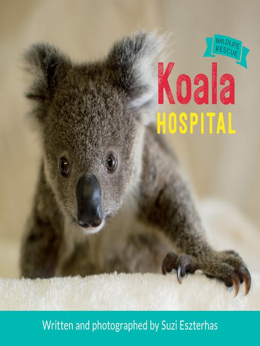 Title details for Koala Hospital by Suzi Eszterhas - Available