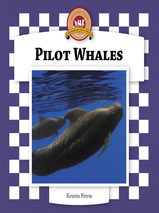 pilot whales essay Pilot whales some part of the paper needs to be related to cape cod (usa) and how their habitat is based around cape cod try using a video/interview as a source.