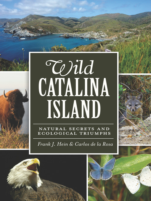 Title details for Wild Catalina Island by Frank J. Hein - Wait list