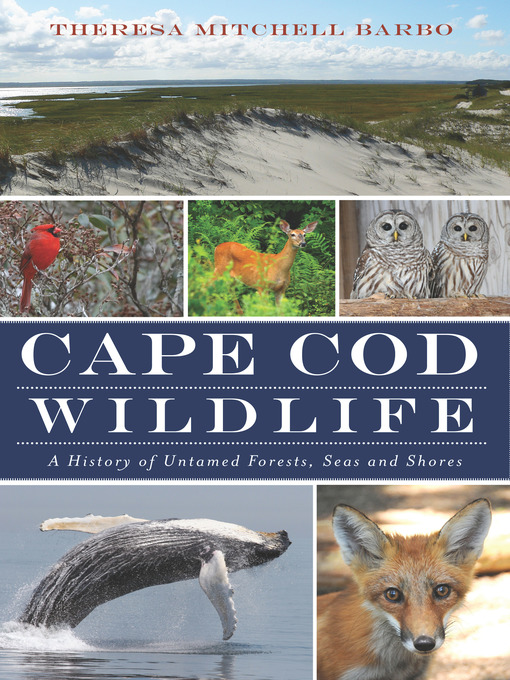 Title details for Cape Cod Wildlife by Theresa Mitchell Barbo - Wait list