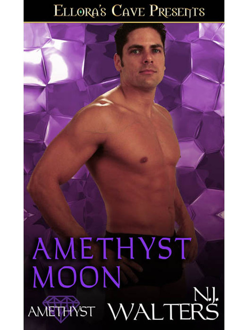 Title details for Amethyst Moon by N. J. Walters - Available