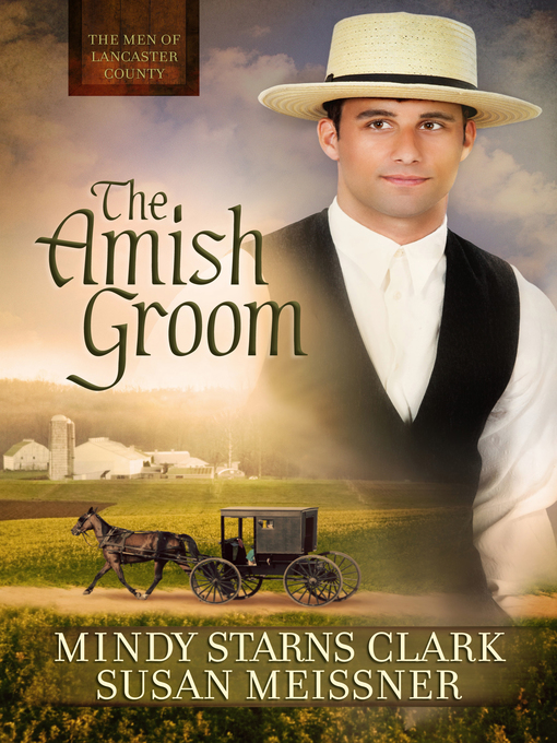 Title details for The Amish Groom by Mindy Starns Clark - Wait list