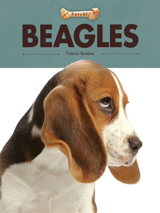 Title details for Beagles by Valerie Bodden - Available