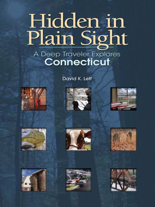 Title details for Hidden in Plain Sight by David K. Leff - Available