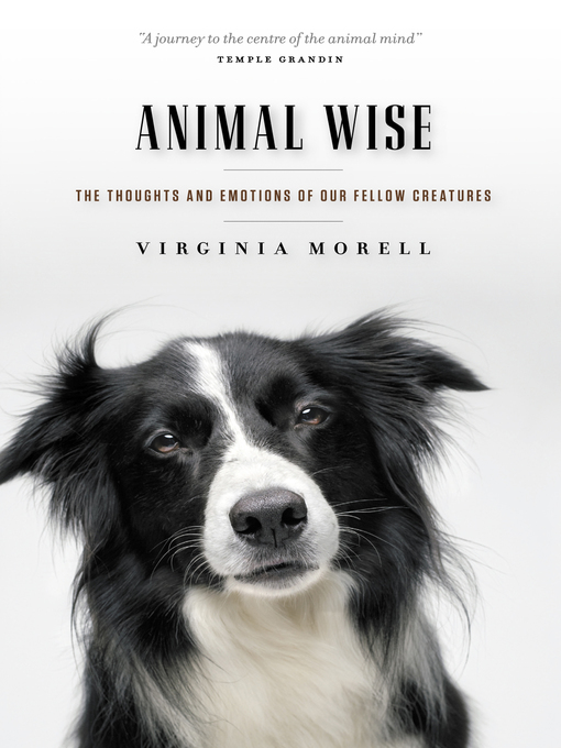 Title details for Animal Wise by Virginia Morell - Available