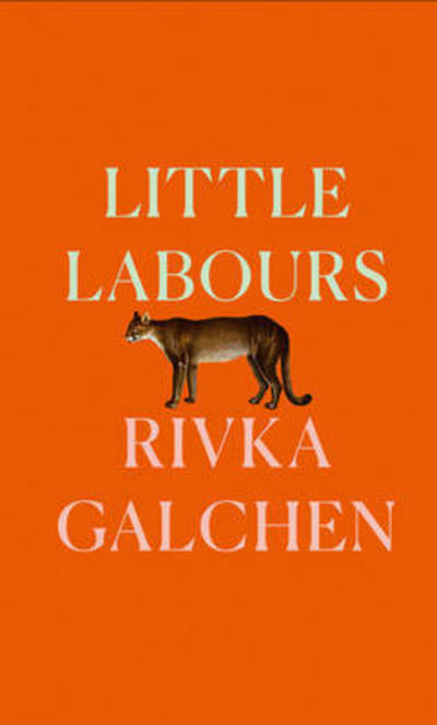 Cover of Little Labours