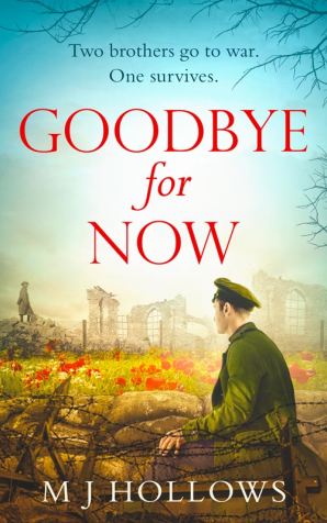 Cover of Goodbye for Now