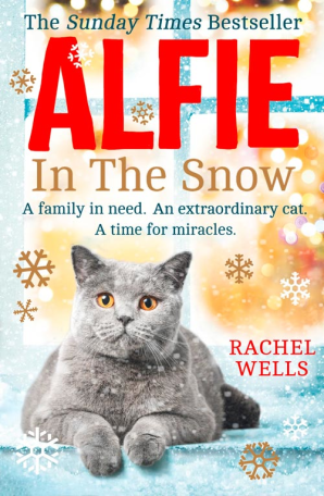 Cover image for Alfie in the Snow