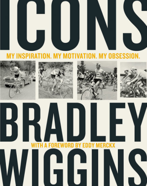 Cover image for Icons
