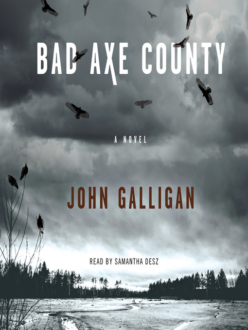 Title details for Bad Axe County by John Galligan - Wait list