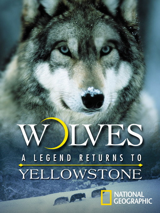 Title details for Wolves: A Legend Returns to Yellowstone by National Geographic - Available
