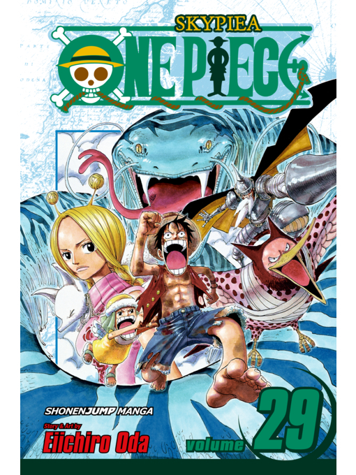 Cover of One Piece, Volume 29