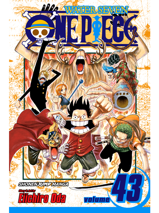 Cover of One Piece, Volume 43