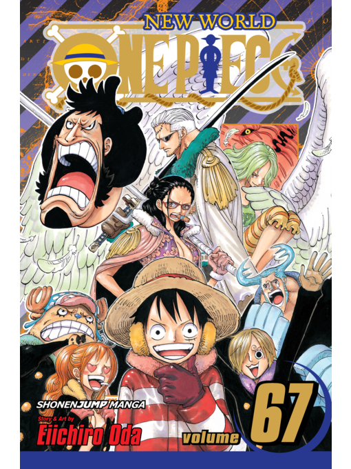 Cover of One Piece, Volume 67