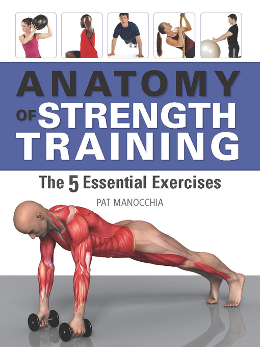 Title details for Anatomy of Strength Training by Pat Manocchia - Wait list