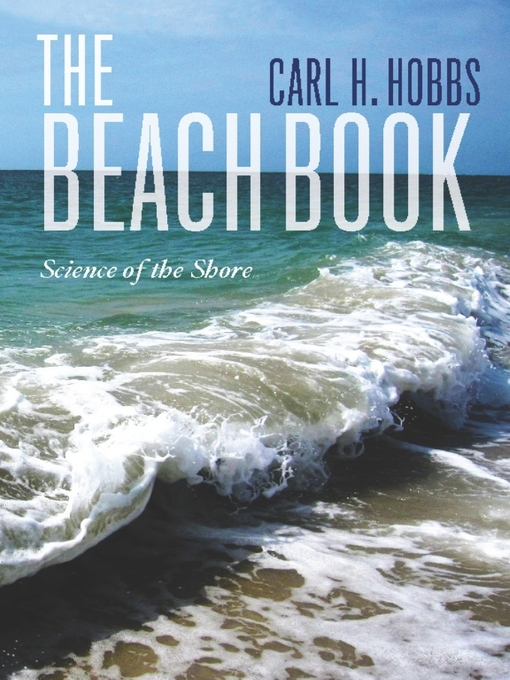 Cover of The Beach Book