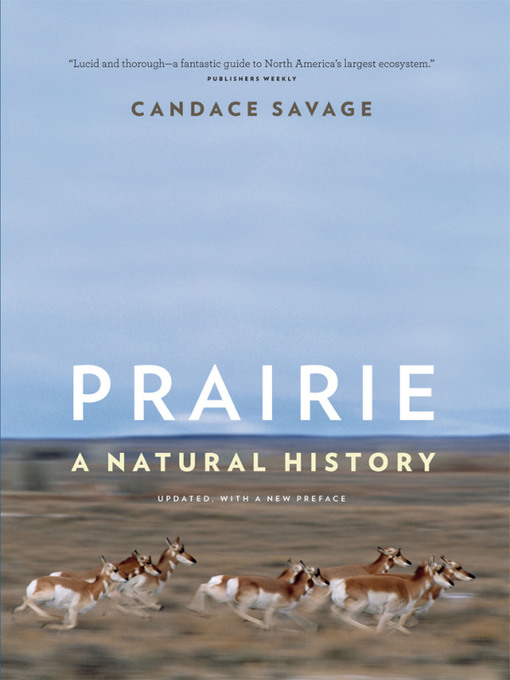 Title details for Prairie by Candace Savage - Available