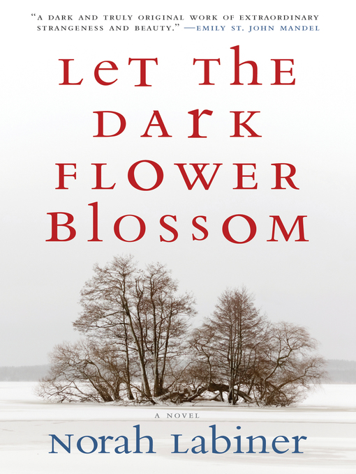 Title details for Let the Dark Flower Blossom by Norah Labiner - Available