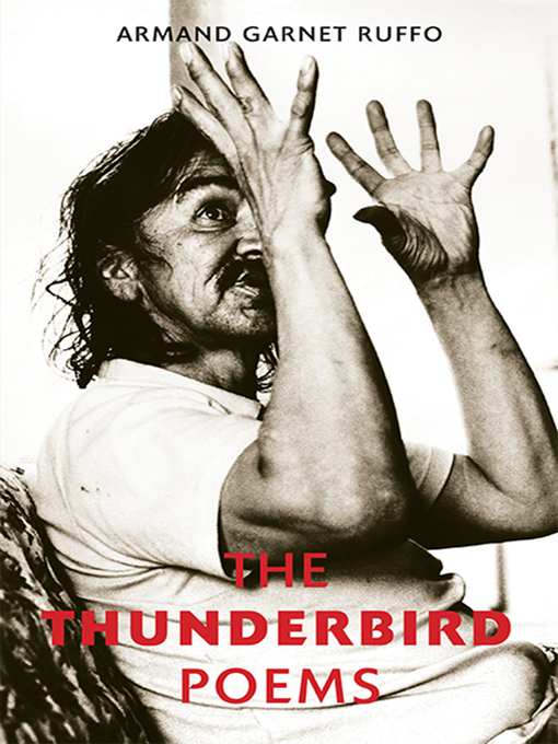 Cover of The Thunderbird Poems