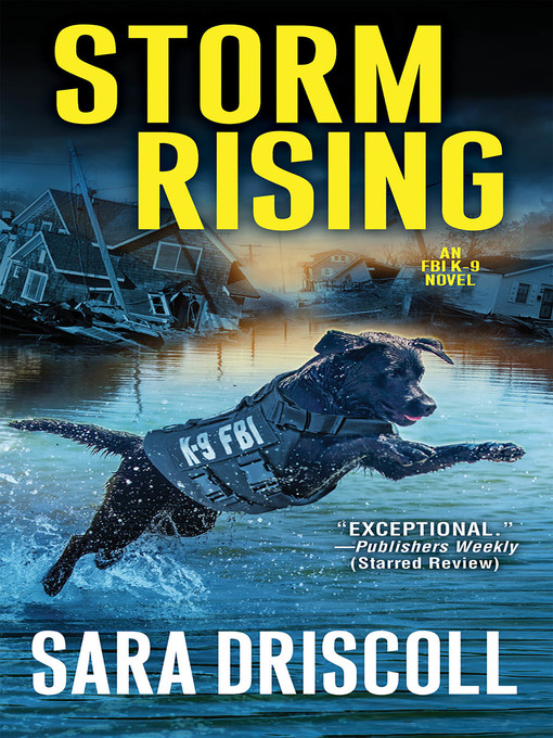 Title details for Storm Rising by Sara Driscoll - Available