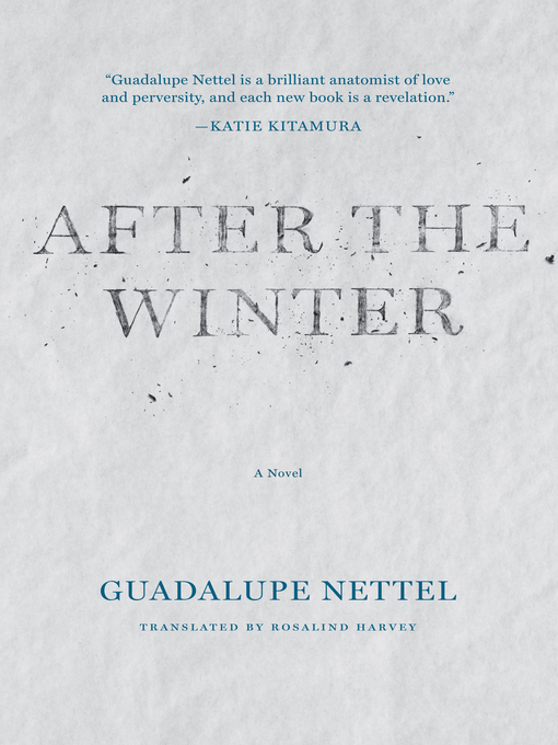 Cover of After the Winter