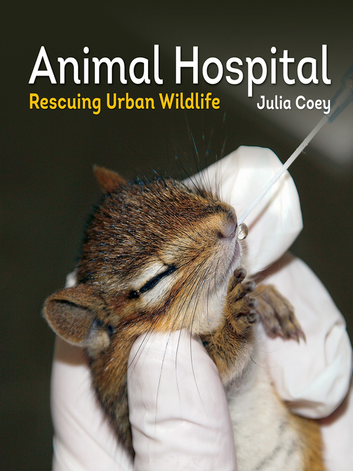 Title details for Animal Hospital by Julia Coey - Available