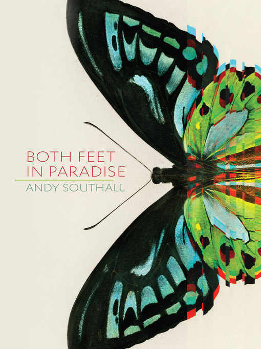 Title details for Both Feet in Paradise by Andy Southall - Wait list