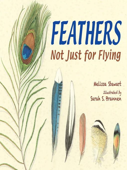 Feathers Not Just for Flying  by Melissa Stewart