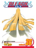 Bleach, Volume 36