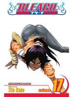 Bleach, Volume 17