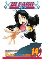 Bleach, Volume 14