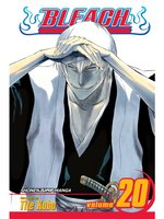 Bleach, Volume 20