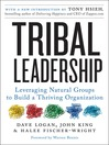Cover image for Tribal Leadership