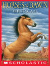 Cover image for The Escape
