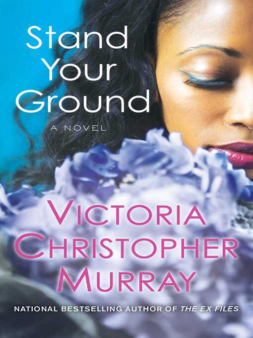 Cover image for Stand Your Ground