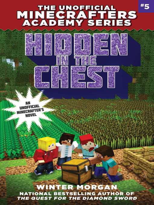 Cover image for Hidden in the Chest
