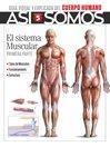 Así Somos - El cuerpo humano