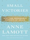 Cover image for Small Victories