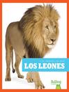 Los leones (Lions)