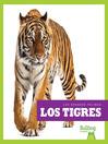 Los tigres (Tigers)