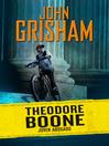 Joven abogado (Theodore Boone 1)
