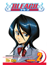 Bleach, Volume 2 [electronic resource]